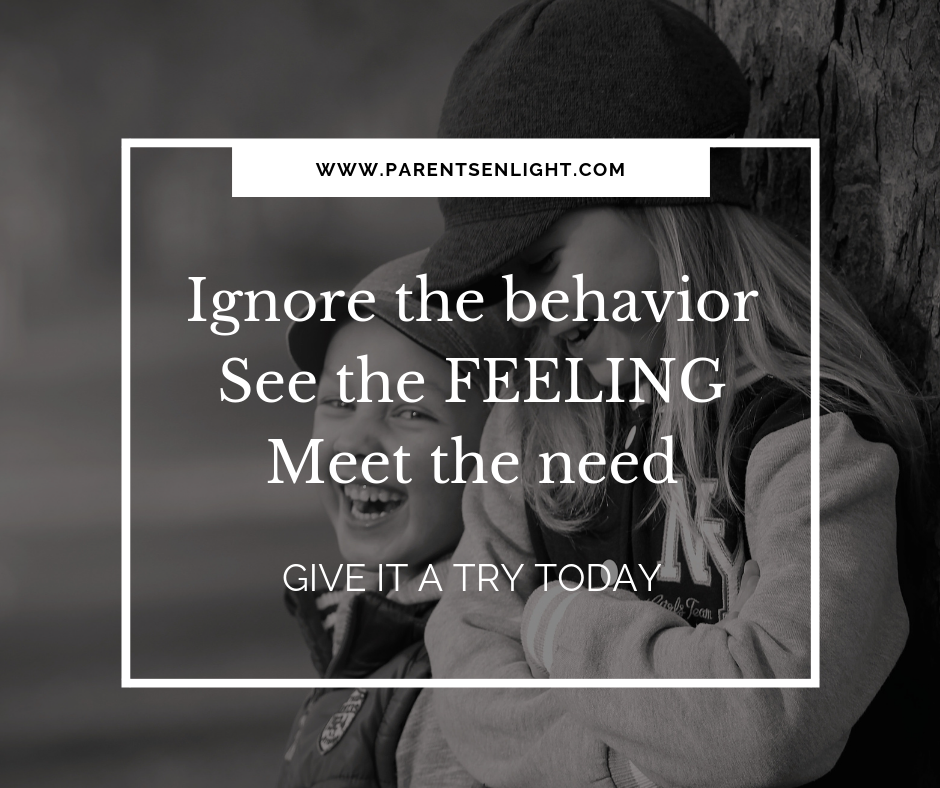 Ignore the behavior, see the feeling, meet the need