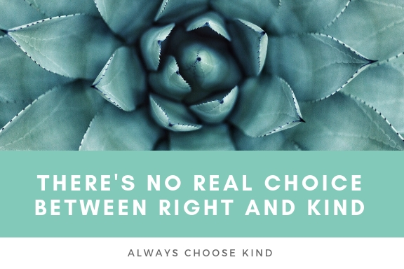 there's no real choice between right and kind. always choose kindness