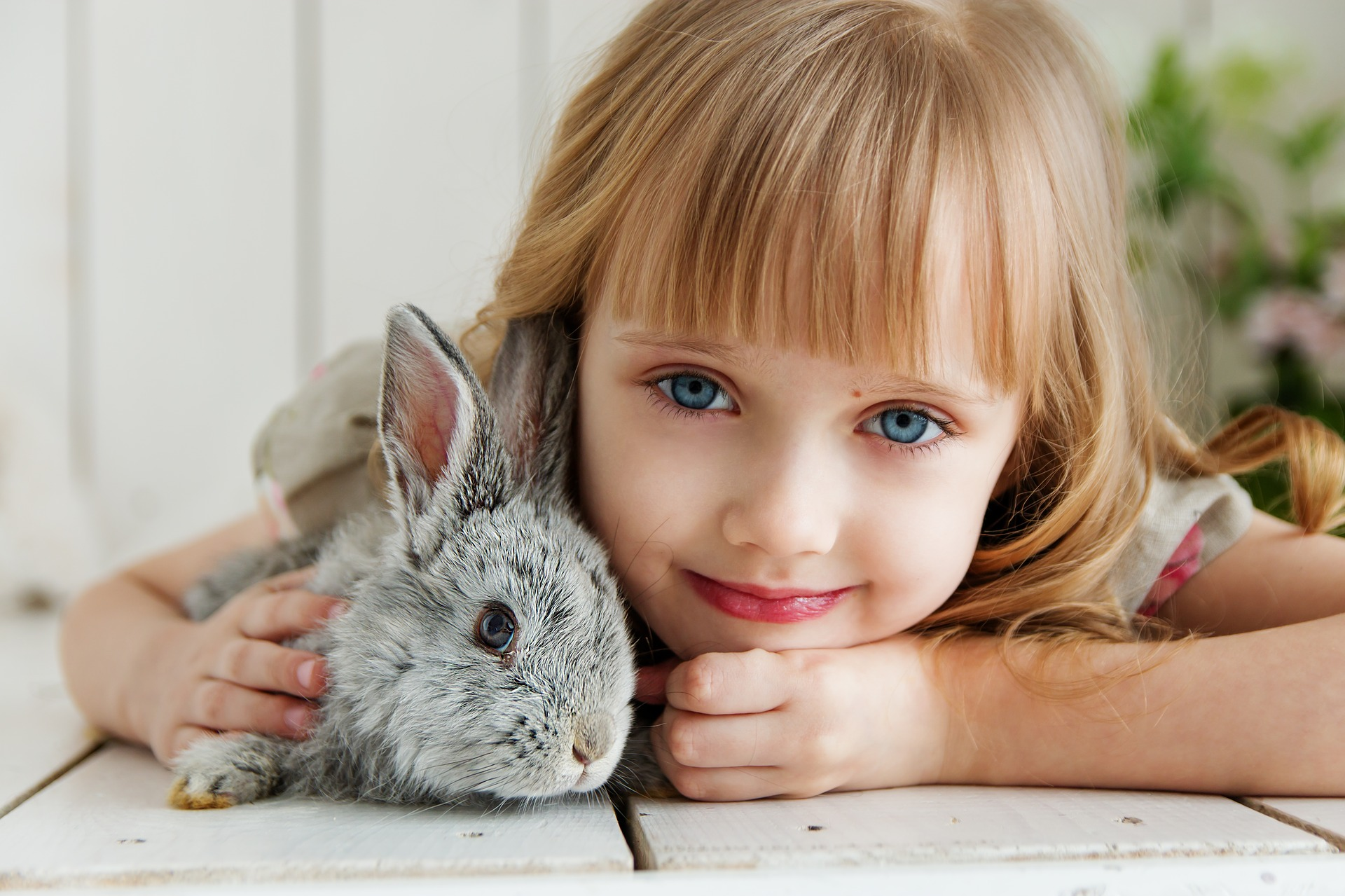 The Rabbit Listened is an amazing book that teaches us the true power of compassion
