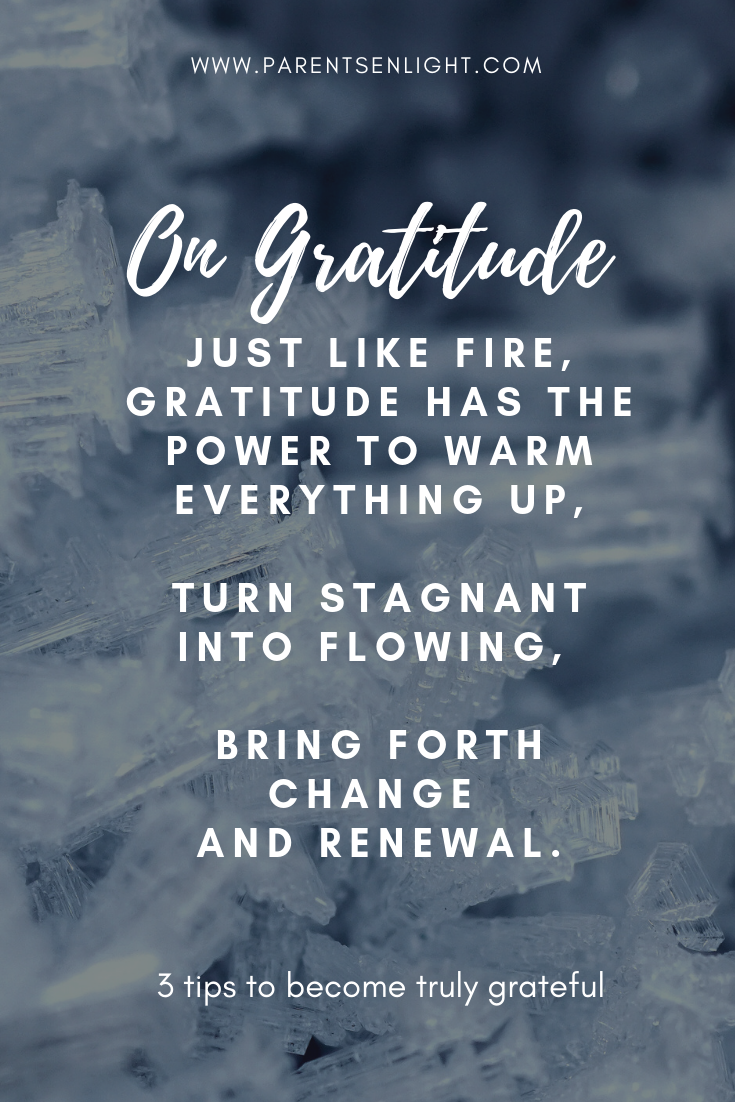 Thanksgiving is the best time to become truly grateful and start celebrating life to the fullest. These 3 easy tips will turn every day into Thanksgiving