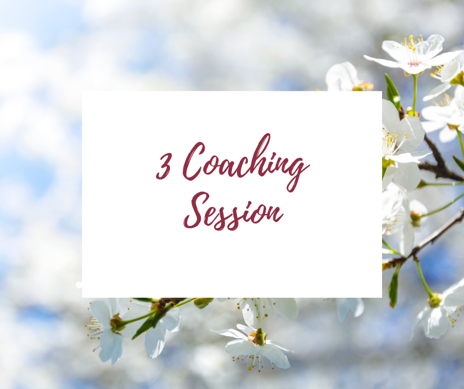 3 Coaching Sessions