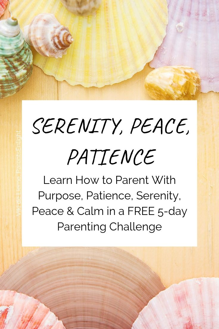 Having a hard time just thinking about summer? This FREE 5-day challenge will take your parenting from fights and power struggles to serenity, peace, and patience in 5 days. Learn how to remain calm and peaceful even (and especially) when you are surrounded by chaos #mindfulness #mindfulparenting #positiveparenting #attachmentparenting #feelings #childrensbigfeelings #summer #summerchallenge #parentingchallenge
