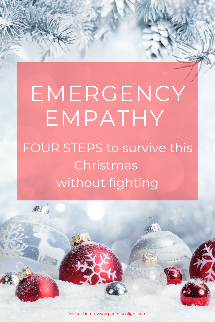 Holiday tension is a known phenomena many suffer from, but it doesn't have to be this way. You don't have to fight; your family doesn't have to meltdown over differences. This is how you can keep sane this Christmas in four steps! #holidaytension #familymeltdown #Christmasstress #stress #positivecommunication #NVC
