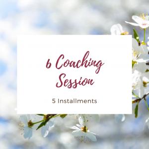 6 Sessions - Installments